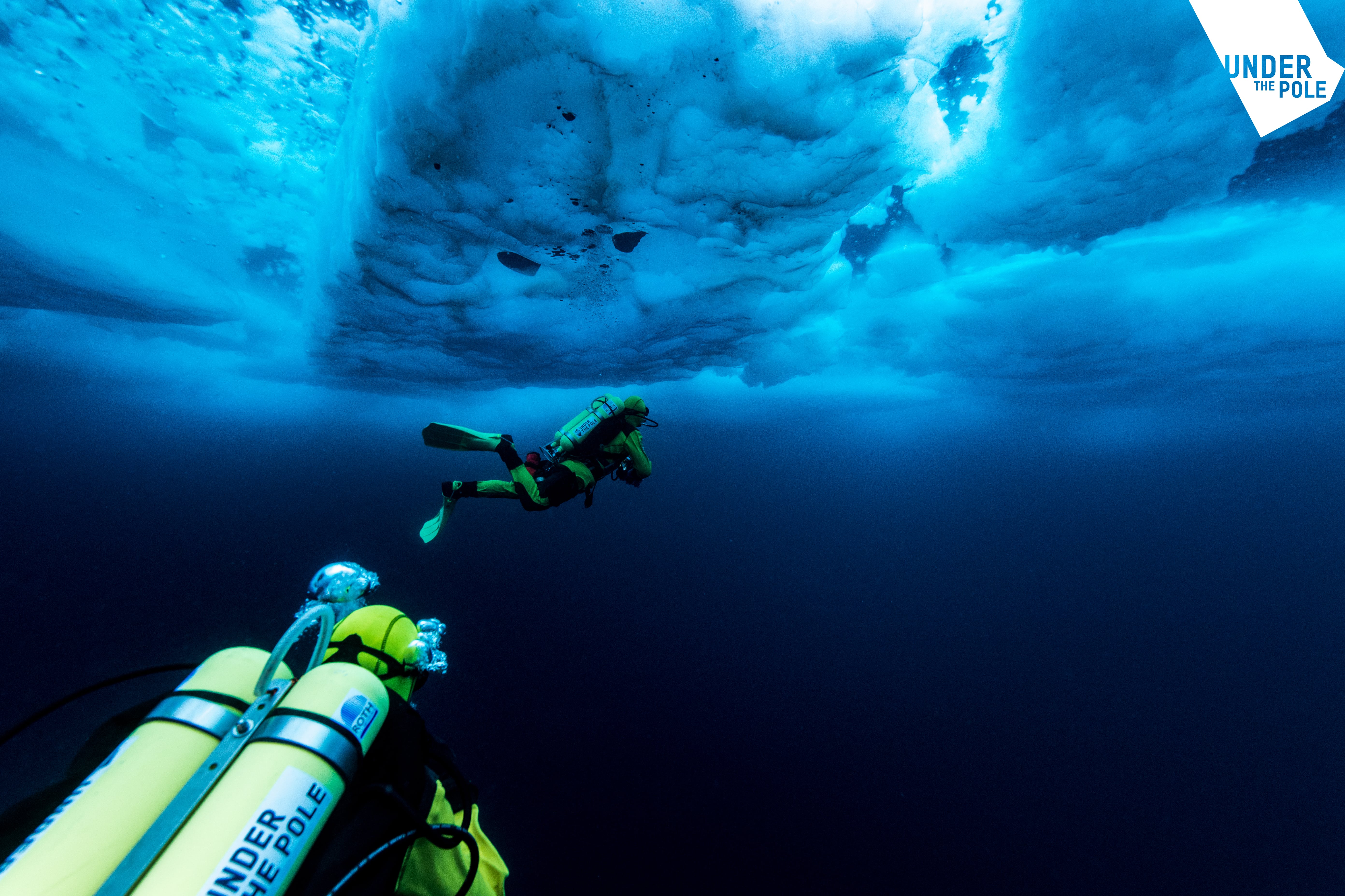Divers go deeper to uncover the impact of climate change on coral reefs